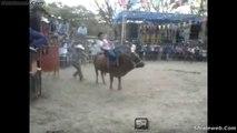 Jaripeo De Rancho Toros Los Constructores De Juliantla Jinetes Montando A Grapa Estilo Colima Dic 2014 Caidas Porrazos Y Sustos