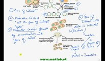 FSc Biology Book2, CH 23, LEC 2, Cloning of Gene DNA Recombinant Technology