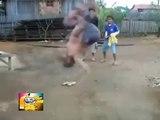 Los Mejores videos graciosos 2014 Caidas Golpes Accidentes Fails