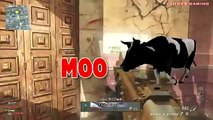 VanossGaming :MW3 Funny Moments EPIC FAIL,Trap Ninja Defuse,Killcams,Mic Trolling, Rage Black Ops 2