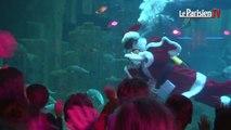 Paris. Un Père Noël dans un aquarium de 600 000 litres d'eau !