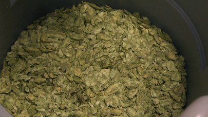 Late Addition Hops Brew