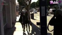Exclu Vidéo : Maria Bello et sa petite amie Clare Munn en pleine séance shopping !