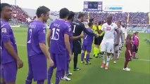 FIORENTINA - TORINO vs Sky Serie A 33° Giornata 22 02 2015