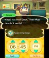 Animal Crossing: New Leaf - Home Improvement (Nintendo 3DS