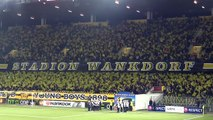 BSC Young Boys - FC Everton 19.02.2015 - 001