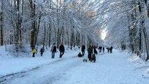 Ski et luge à La Chapelle dans les Ardennes