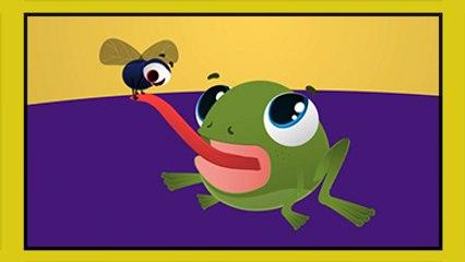 Küçük Kurbağa - Çocuk Şarkısı - Edis ile Feris Çizgi Film Çocuk Şarkıları Videoları