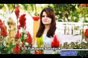 Gul Sanga Pashto new Album Afghan Hits Vol 7 2015 song Yar Mi Musafar Dy