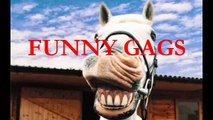 FUNNY GAGS Fail Compilation   Fails Pranks   Funny Video Best Fails Of December 2014