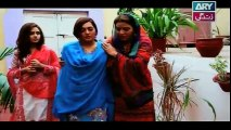 Behnein Aisi Bhi Hoti Hain Episode 148 Full on Ary Zindagi 30th December 2014