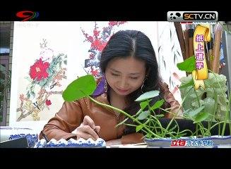 20141231 快乐生活巧管家 胖姐慧生活:纸上道学