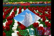 wishing you a lovely 2015 new year for All world