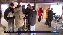 Morbihan : les habitants de l'île de Groix remontés contre la hausse des tarifs des liaisons maritimes