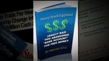 Penny Stock Egghead - Learn To Trade Penny Stocks! - New Video