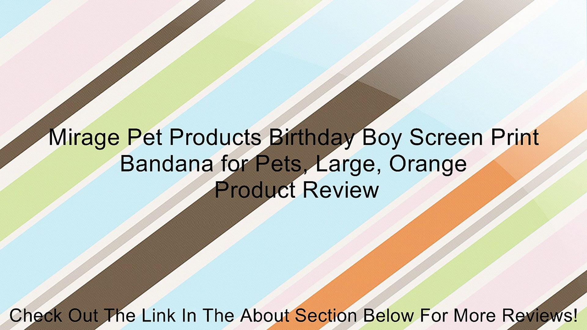 Mirage Pet Products Birthday Boy Screen Print Bandana for Pets, Large, Orange Review