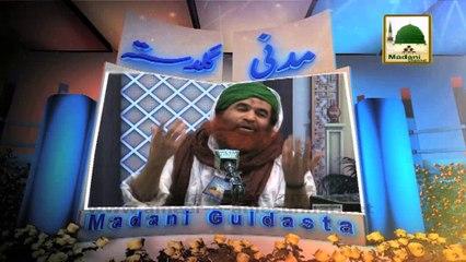 Madani Guldasta 211 - Baith Kar Salat O Salam Perhna Kesa - Maulana Ilyas Qadri