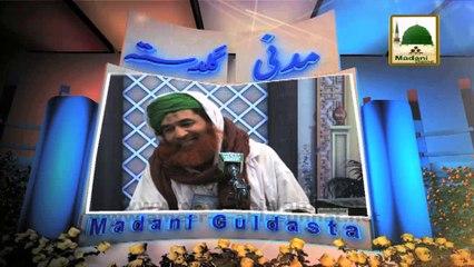 Madani Guldasta 57 - Har Ashiq e Rasool Ki Tamanna - Maulana Ilyas Qadri