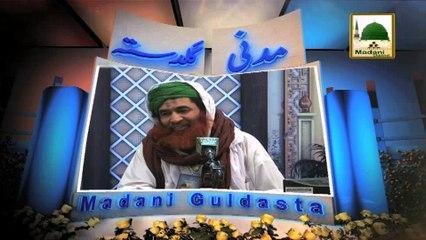 Madani Guldasta 202 - Noor Waley Aaqa - Maulana Ilyas Qadri