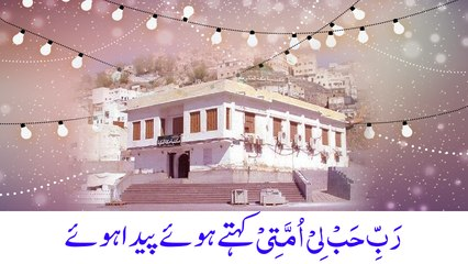 Rabbi Habli Ummati Kehte Hue Paida Hue - Jashan e Wiladat - Maulana Ilyas Qadri