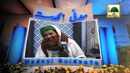 Madani Guldasta 545 - Hath Milanay Ki Sunnatain Aur Adaab - Maulana Ilyas Qadri