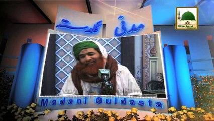Imam Mauzin O Khadim Ki Mali Madad - Maulana Ilyas Qadri - Madani Guldasta 552