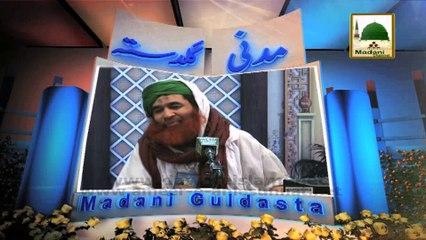 Madani Guldasta 576 - Dawat e Islami Sab Ashiq e Rasool Ki - Maulana Ilyas Qadri