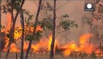 40.000 personas a punto de ser evacuadas por los incendios en Australia Meridional