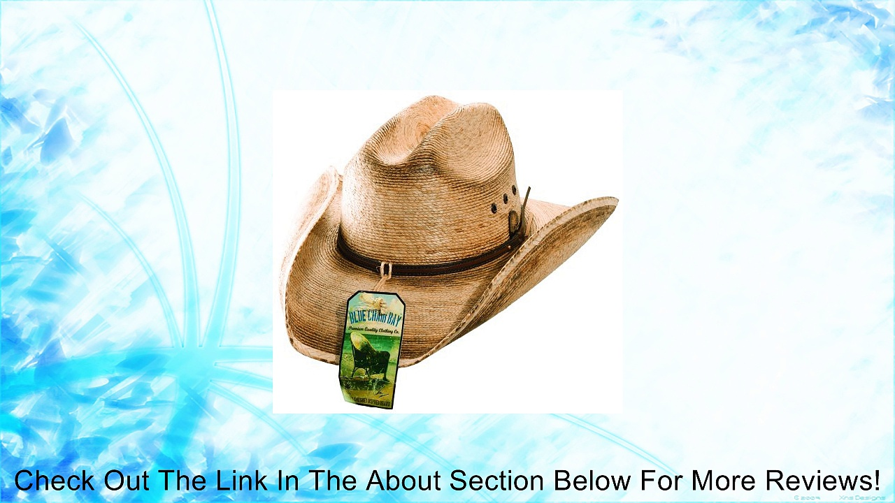 Blue Chair Bay Mens Palm Leaf and Leather Guitar Pick Detail Western Cowboy Hat Review