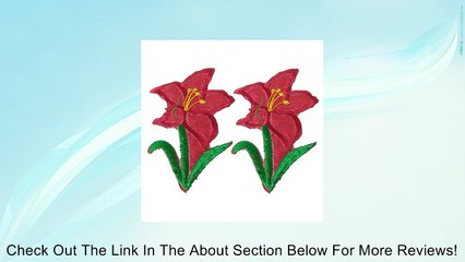 Flower Iron On Embroidery Fabric Applique Patch 2 Pcs Red Green Review