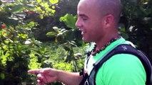 2014/12/31 11h13 15 KiloMètres Avant Arrivée Défi +50Km de Marche Coach Mickael Plocoste Solidarité Paix Guadeloupe Départ 7h10 Hôtel-de-Ville Baie-Mahault Succès Arrivée 14h40 Mairie Saint-François Mercredi 31 Décembre 2014