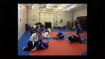 Tigers Lair Martial Arts Academy - Mixed Martial Arts - Kids Martial Arts