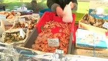 Fruits de mer: Dernière ligne droite pour les professionnels