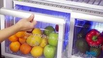 Le Sorbeto DN161230DX, le réfrigérateur idéal pour réaliser de délicieuses glaces maison