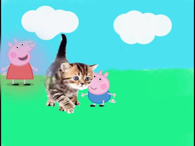 Pepa prase- Ide maca oko tebe