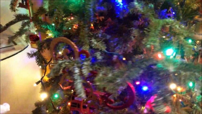 Our Family Christmas Celebration 2014