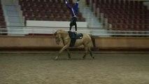 ÉQUITATION : La voltige se pratique aussi à cheval