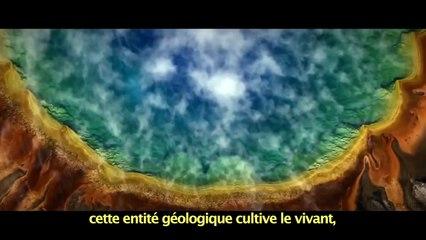 """ALAN WATTS - """"Le Sentiment d'Unité"""""""