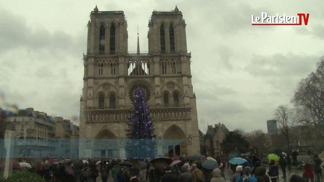 Cathédrale Notre-Dame de Paris : le glas sonne pour Charlie