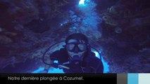 Le Zapp' d'Adé & Jean: Plongée à Cozumel.