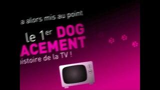 Cesar Mars PF France nourriture pour chien Placement du chie