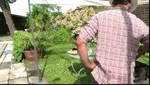 """Huggies (Kimberly Clark) - couches pour bébés Huggies Little Swimmers, """"Piscine""""- juin 2012 - Des ploufs sans oups"""