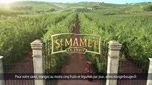 """St Mamet, Oasis - compotes de fruits, """"Oasis Gourdes"""" - novembre 2012"""