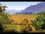 Vins du Pays d'Oc Indication Géographique Protégée (IGP) - vins - mars 2011