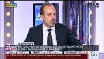 Le quantitative easing de la BCE peut-il sauver la zone euro ?: Nicolas Doisy - 14/01