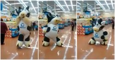 Dancing Cow Mascot Has Awesome Moves In Mexican Grocery Store