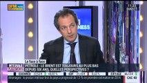 Eric Bertrand VS Régis Bégué (2/2): Le QE de la BCE pourrait-il réduire la volatilité sur les marchés? – 15/01