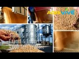 Buy Bulk Wholesale USA Feed Wheat, USA Feed Wheat Import, Buy Bulk USA Feed Wheat, Bulk USA Feed Wheat, Bulk USA Feed Wheat, USA Feed Wheat, Feed Wheat Grade 1, Feed Wheat Grade 2, Feed Wheat Grade 3
