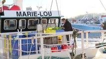 Pêche. Les chalutiers pélagiques interdits de pêche au bar en Manche