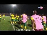 أهداف الجزائر وجنوب أفريقيا | كأس أمم أفريقيا 2015